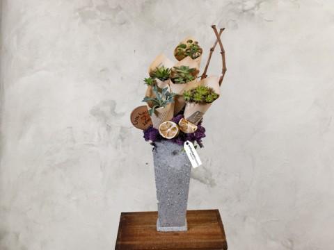 Aranjament floral cu 5 plante suculente