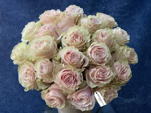 Buchet 23 Trandafiri roz