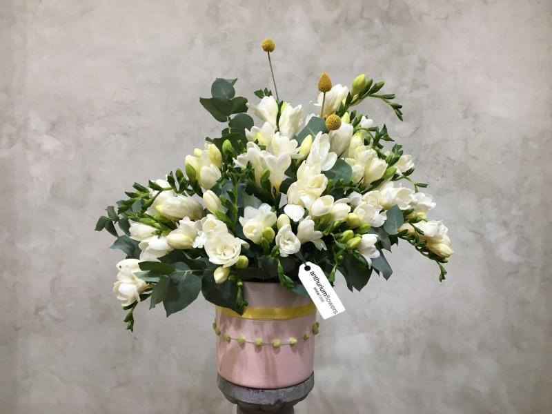 Aranjament Floral 25 Frezii Alebe