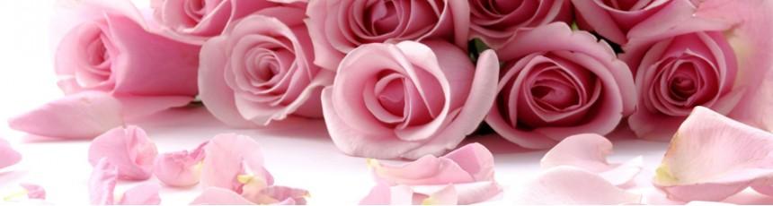 Buchete Trandafiri, trandafiri si aranjamente florale din trandafiri disponibile online cu livrare in Constanta.